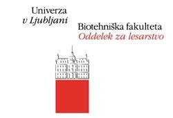 Sustainability bachelor thesis